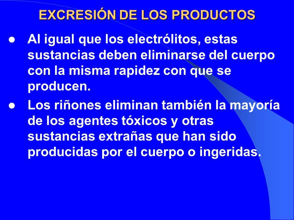 EXCRESIÓN DE LOS PRODUCTOS