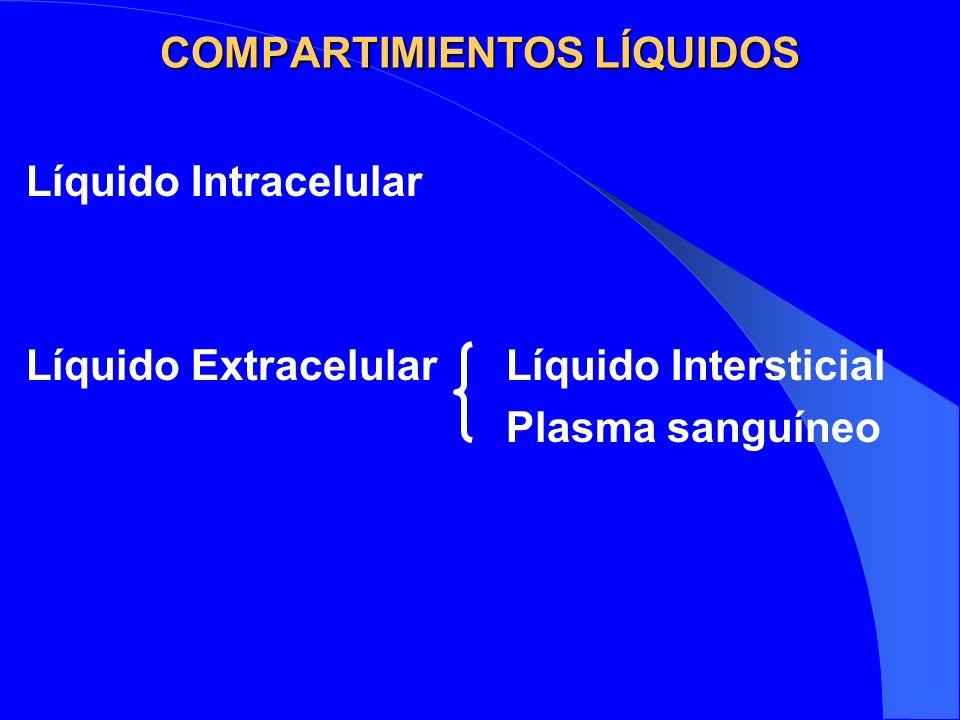 COMPARTIMIENTOS LÍQUIDOS