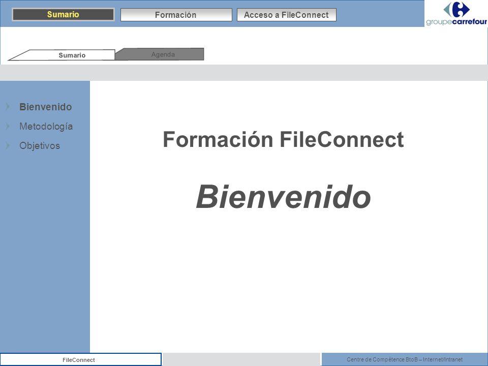Formación FileConnect