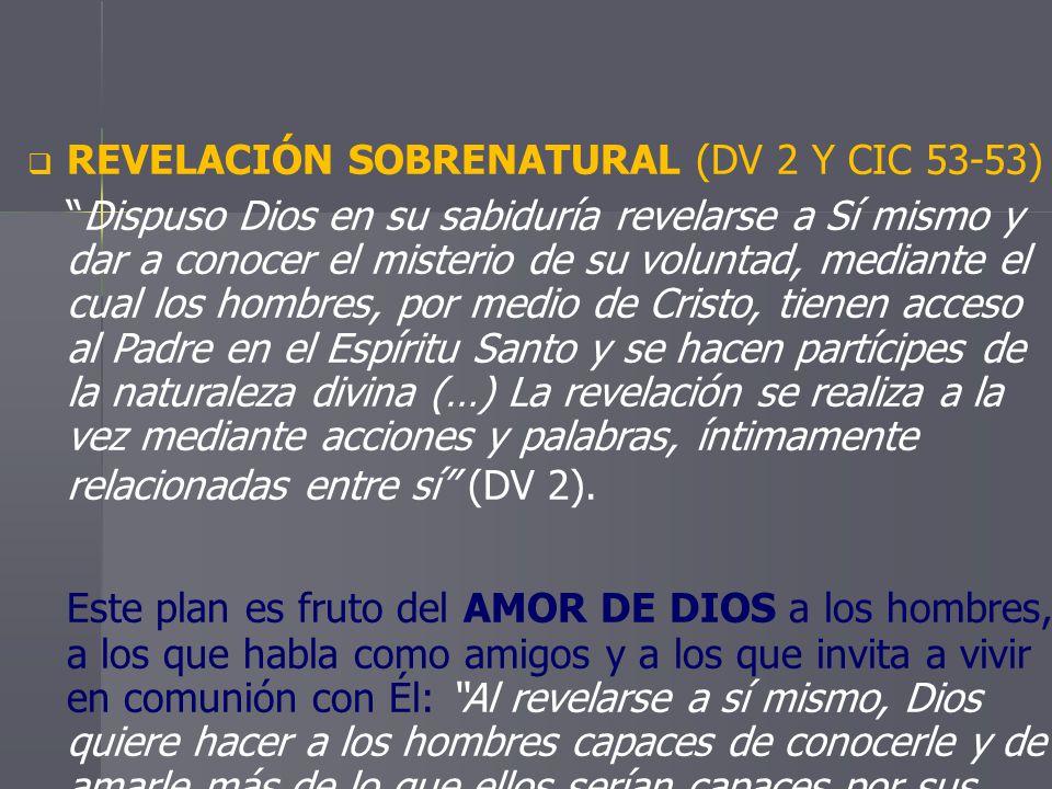 REVELACIÓN SOBRENATURAL (DV 2 Y CIC 53-53)
