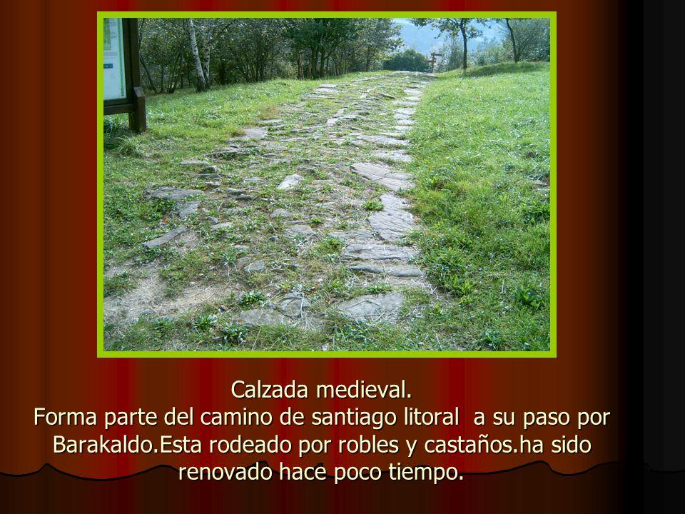 Calzada medieval.