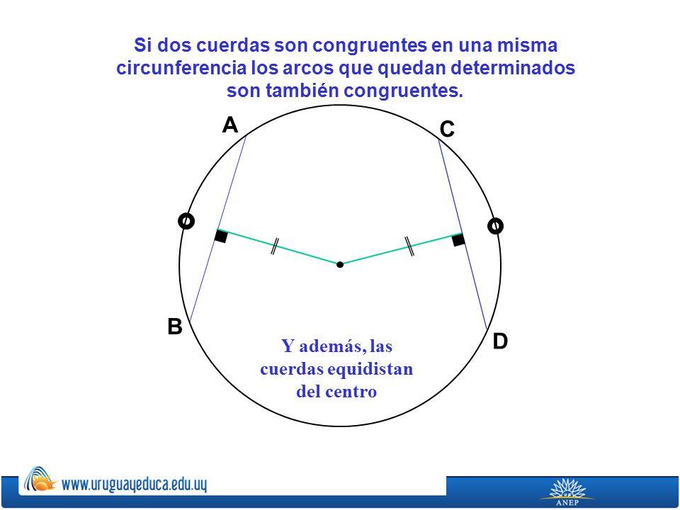 A C B D Si dos cuerdas son congruentes en una misma