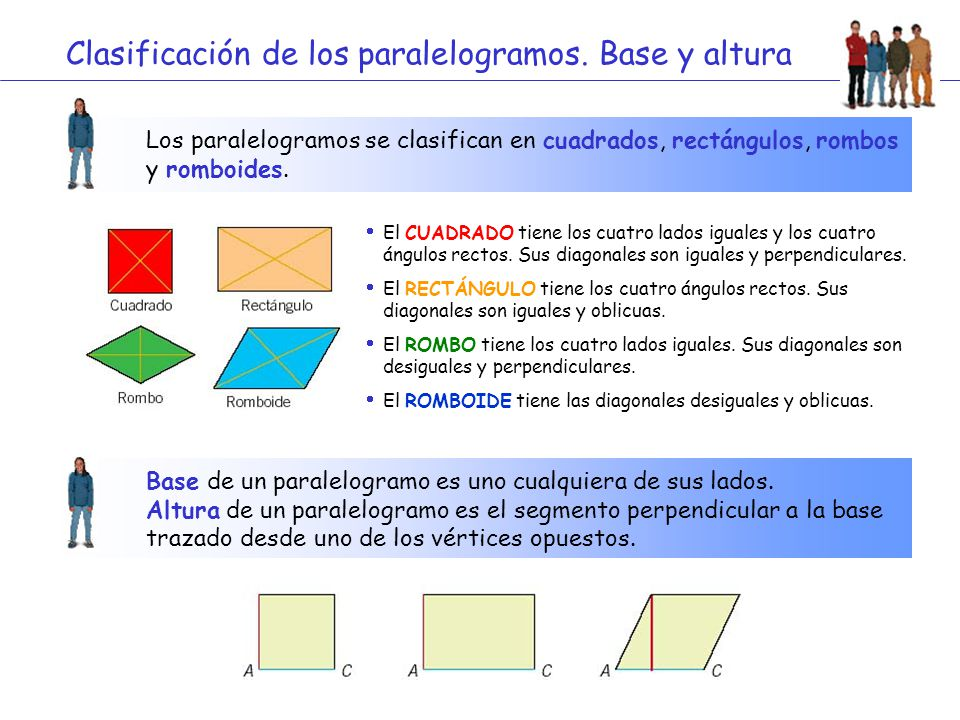 Clasificación de los paralelogramos. Base y altura