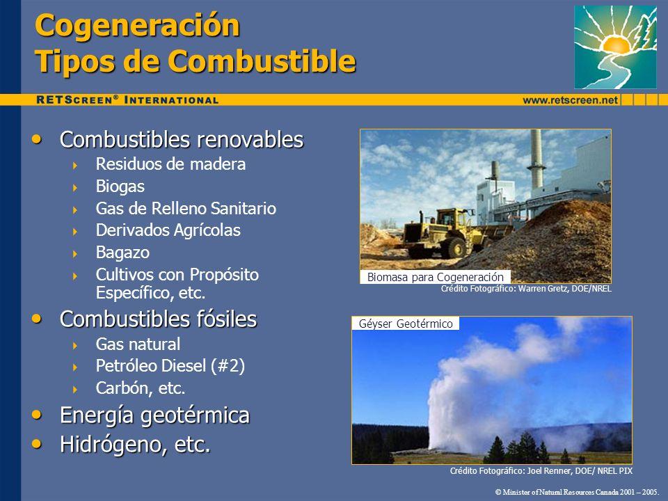 Cogeneración Tipos de Combustible