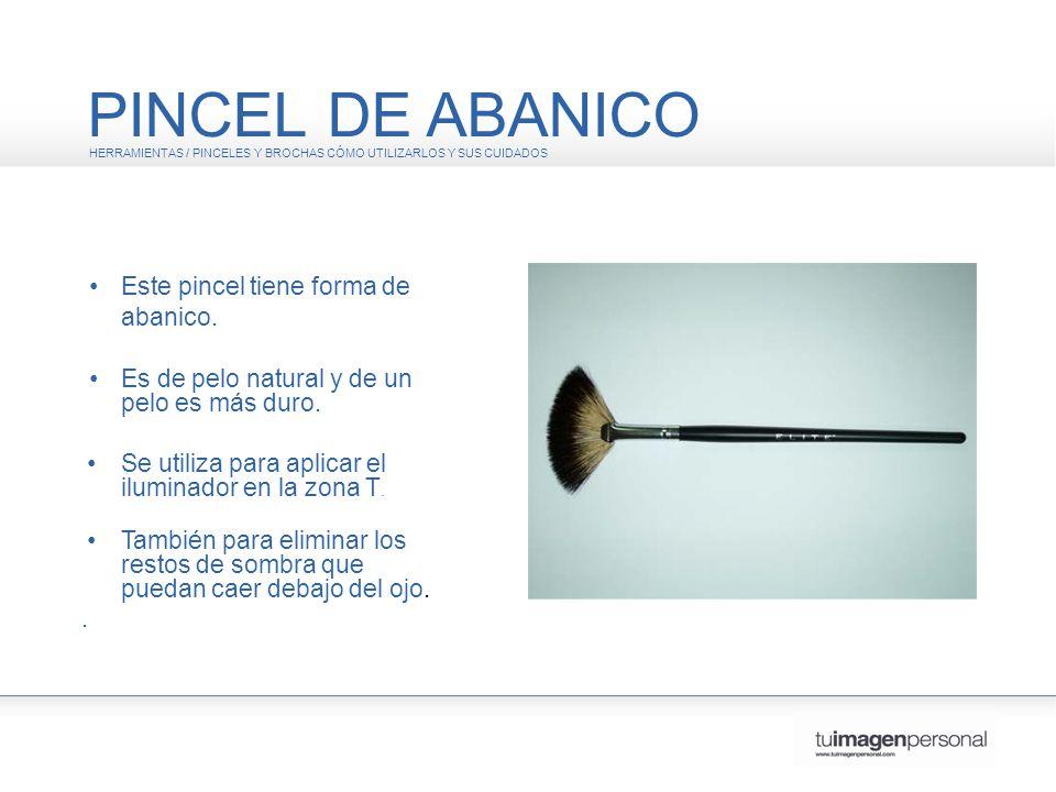 PINCEL DE ABANICO • Este pincel tiene forma de abanico.