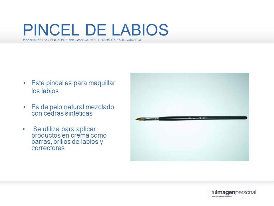 PINCEL DE LABIOS • Este pincel es para maquillar los labios