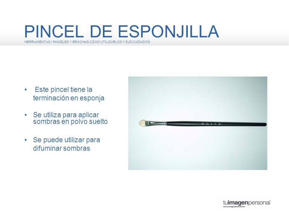 PINCEL DE ESPONJILLA • Este pincel tiene la terminación en esponja