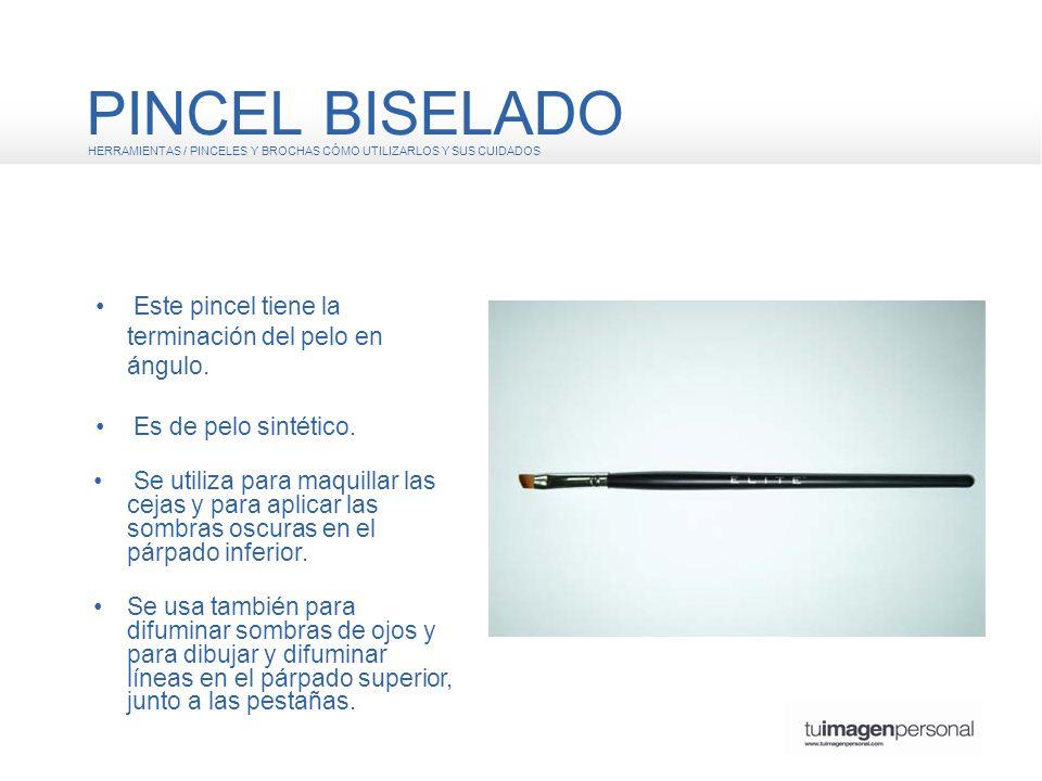 PINCEL BISELADO • Este pincel tiene la terminación del pelo en ángulo.
