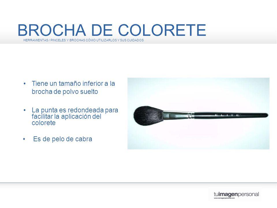 BROCHA DE COLORETE HERRAMIENTAS / PINCELES Y BROCHAS CÓMO UTILIZARLOS Y SUS CUIDADOS. • Tiene un tamaño inferior a la brocha de polvo suelto.