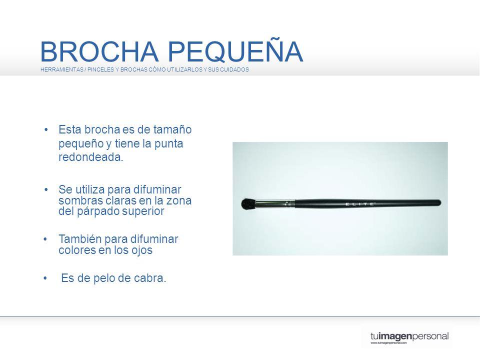 BROCHA PEQUEÑA HERRAMIENTAS / PINCELES Y BROCHAS CÓMO UTILIZARLOS Y SUS CUIDADOS. • Esta brocha es de tamaño pequeño y tiene la punta redondeada.