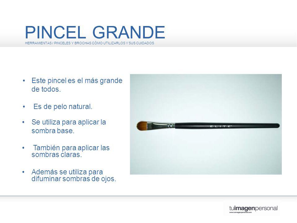 PINCEL GRANDE • Este pincel es el más grande de todos.