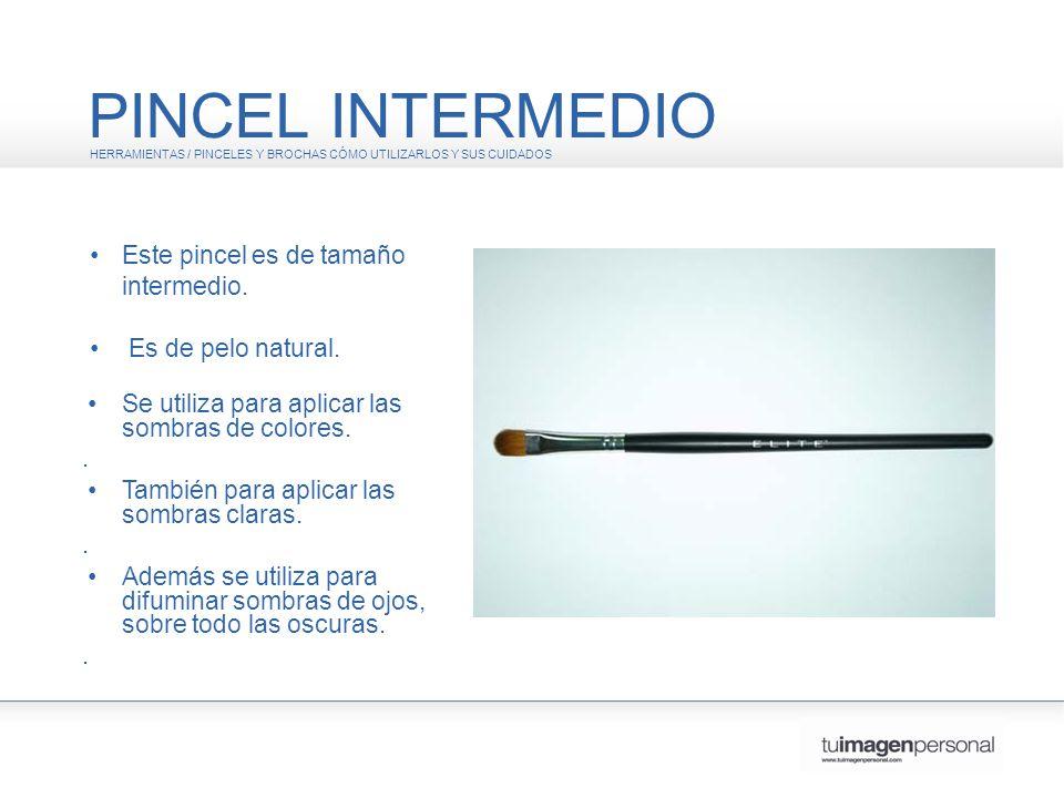PINCEL INTERMEDIO • Este pincel es de tamaño intermedio.