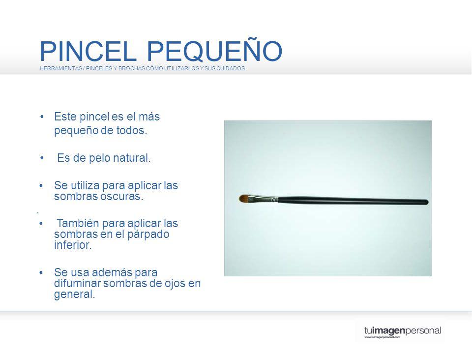 PINCEL PEQUEÑO • Este pincel es el más pequeño de todos.