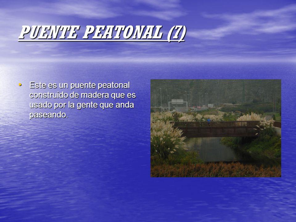 PUENTE PEATONAL (7) Este es un puente peatonal construido de madera que es usado por la gente que anda paseando.