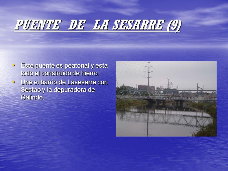 PUENTE DE LA SESARRE (9) Este puente es peatonal y esta todo el construido de hierro.
