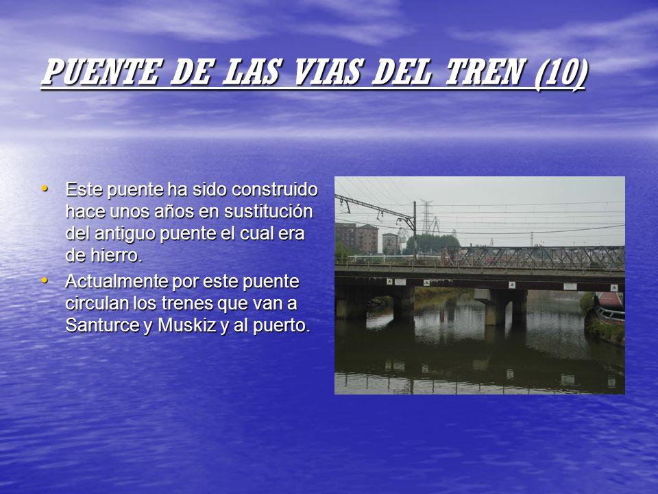 PUENTE DE LAS VIAS DEL TREN (10)