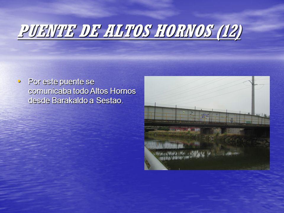 PUENTE DE ALTOS HORNOS (12)