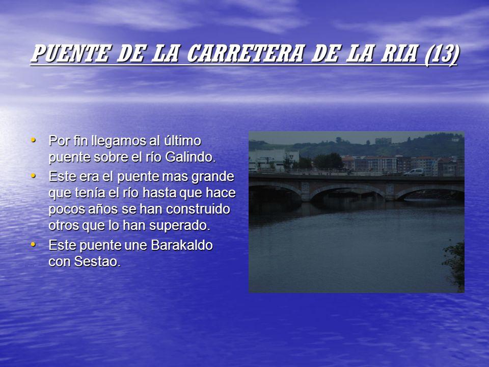 PUENTE DE LA CARRETERA DE LA RIA (13)