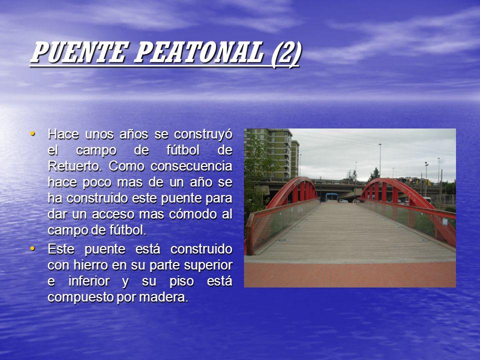 PUENTE PEATONAL (2)