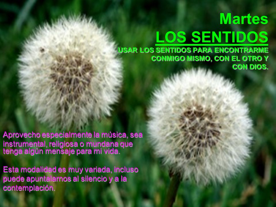 Martes LOS SENTIDOS USAR LOS SENTIDOS PARA ENCONTRARME CONMIGO MISMO, CON EL OTRO Y CON DIOS.