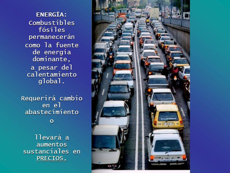Combustibles fósiles permanecerán