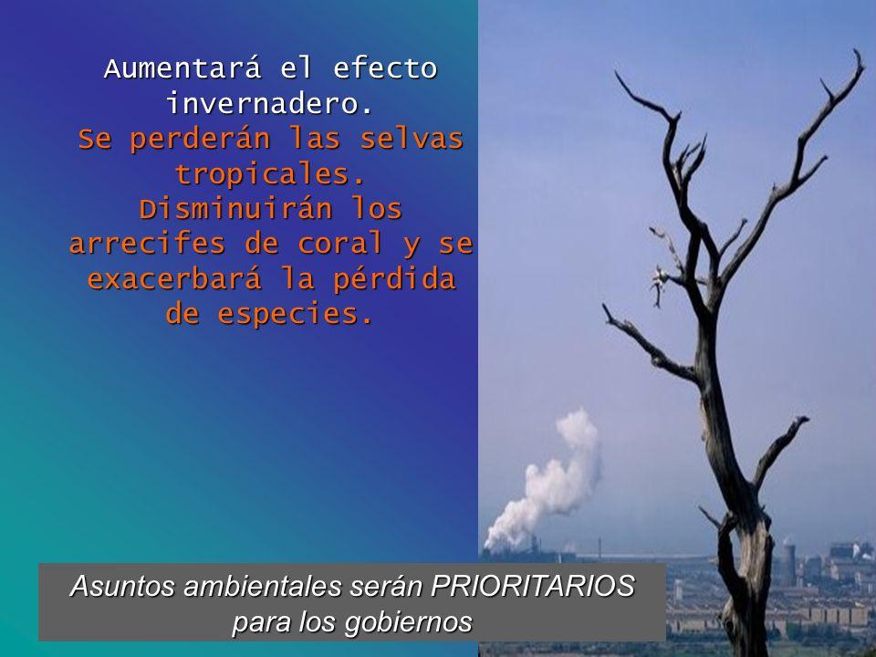 Aumentará el efecto invernadero. Se perderán las selvas tropicales.