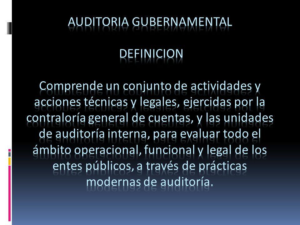 Auditoria gubernamental definicion comprende un conjunto for Practica de oficina definicion