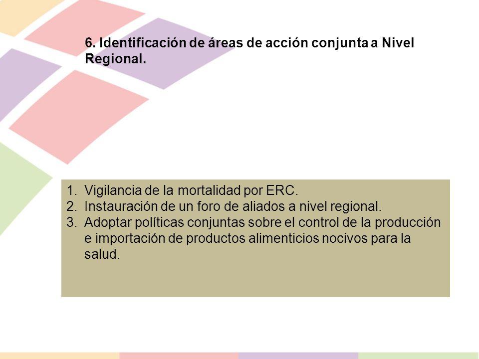 6. Identificación de áreas de acción conjunta a Nivel Regional.