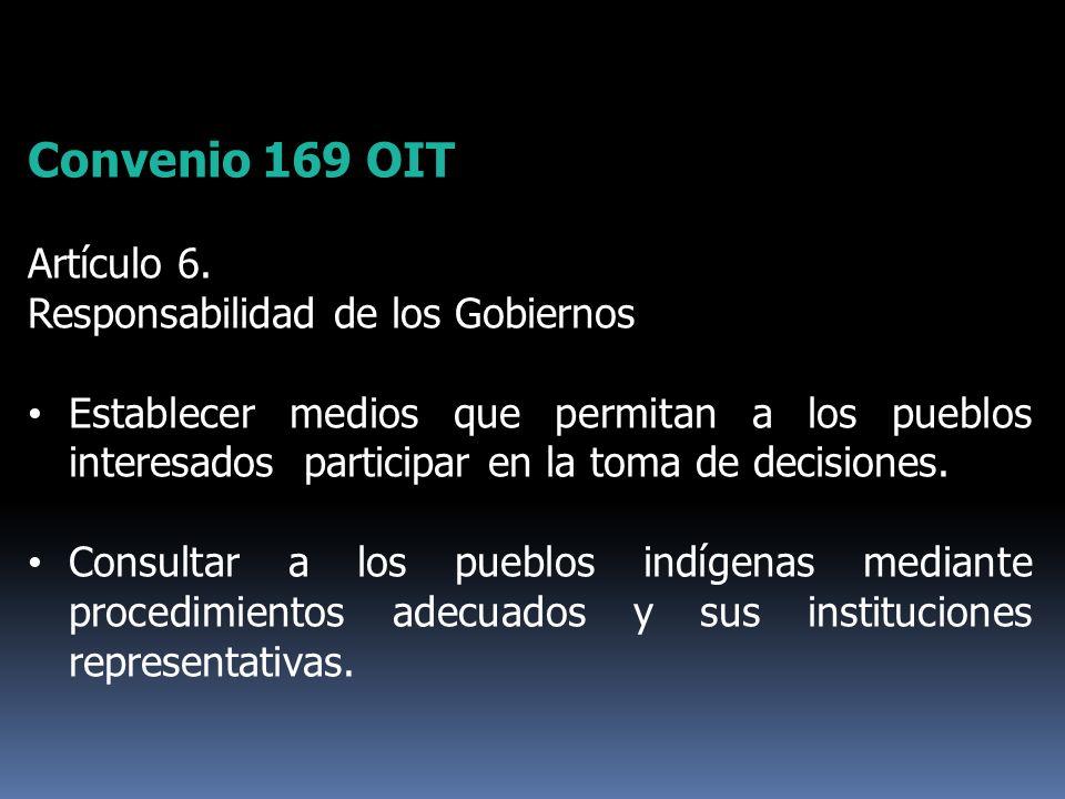 Convenio 169 OIT Artículo 6. Responsabilidad de los Gobiernos