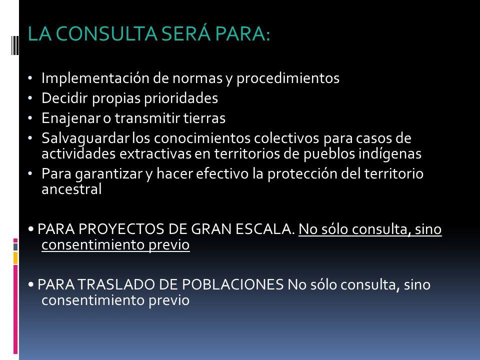 LA CONSULTA SERÁ PARA: Implementación de normas y procedimientos