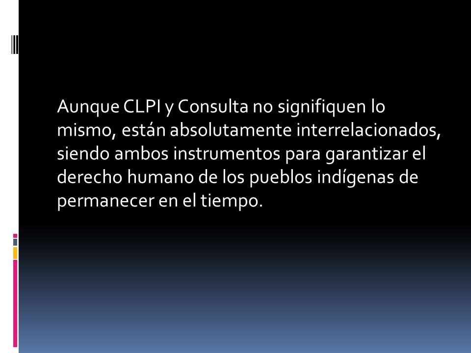 Aunque CLPI y Consulta no signifiquen lo mismo, están absolutamente interrelacionados, siendo ambos instrumentos para garantizar el derecho humano de los pueblos indígenas de permanecer en el tiempo.
