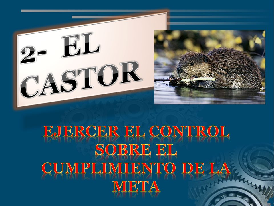 EJERCER EL CONTROL SOBRE EL CUMPLIMIENTO DE LA META