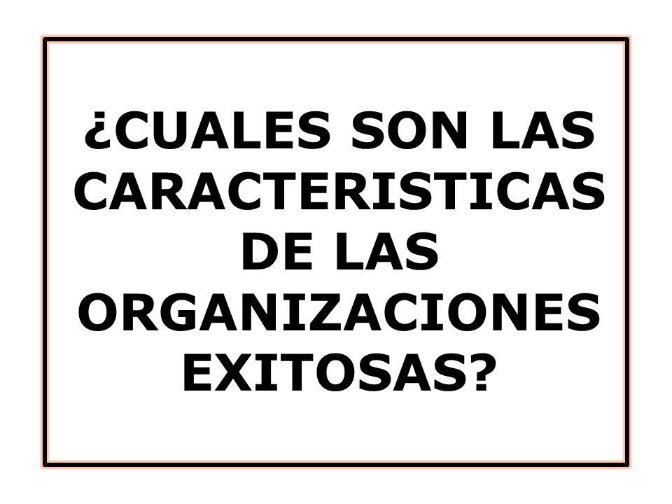 ¿CUALES SON LAS CARACTERISTICAS DE LAS ORGANIZACIONES EXITOSAS