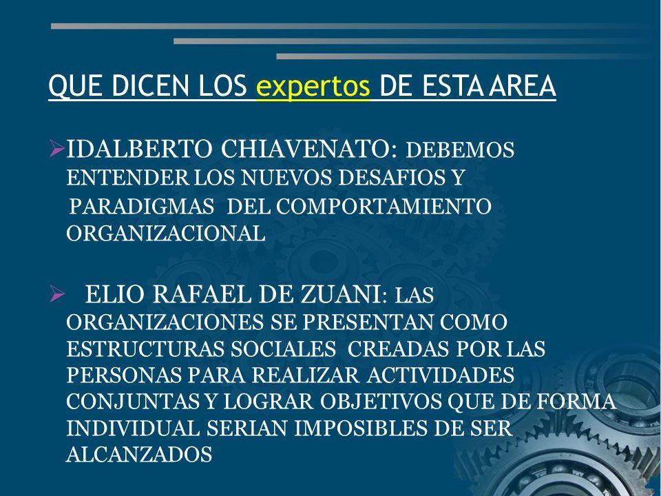 QUE DICEN LOS expertos DE ESTA AREA
