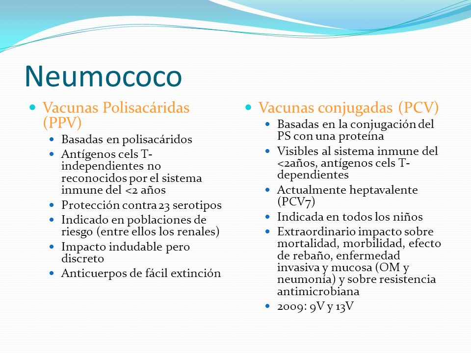 Neumococo Vacunas Polisacáridas (PPV) Vacunas conjugadas (PCV)
