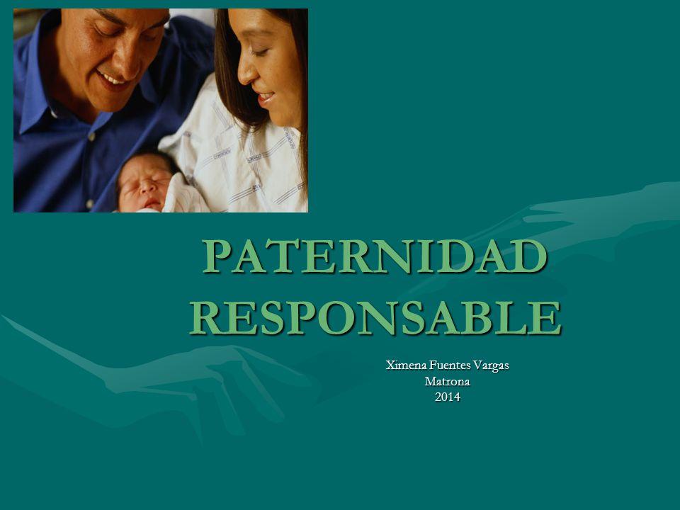 Paternidad responsable ppt descargar for Paternidad responsable