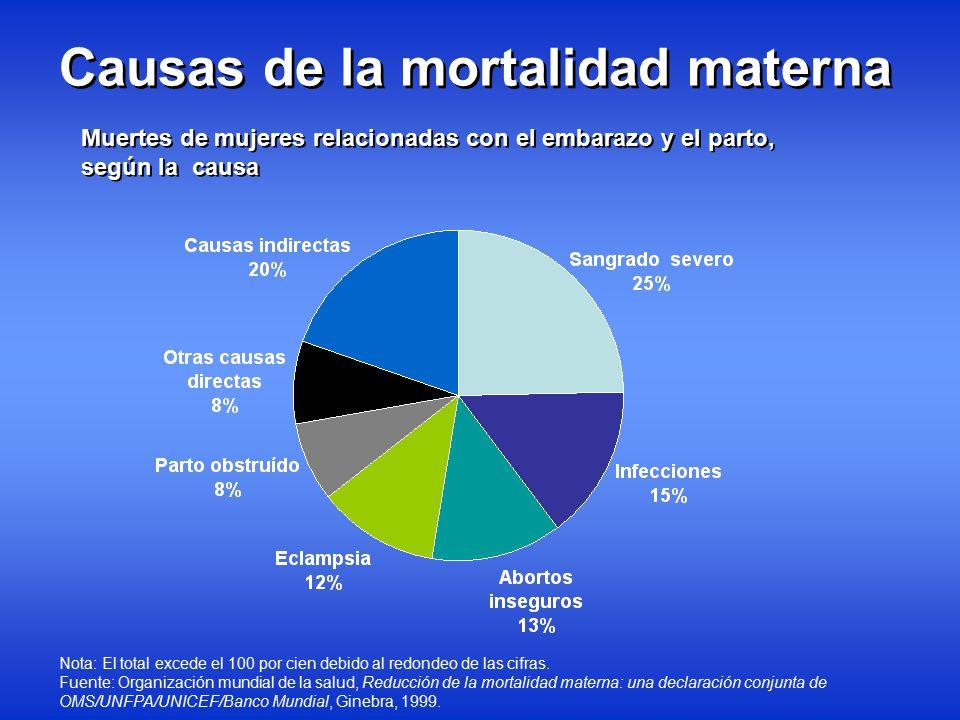 Causas de la Mortalidad Materno-Infantil - ppt descargar
