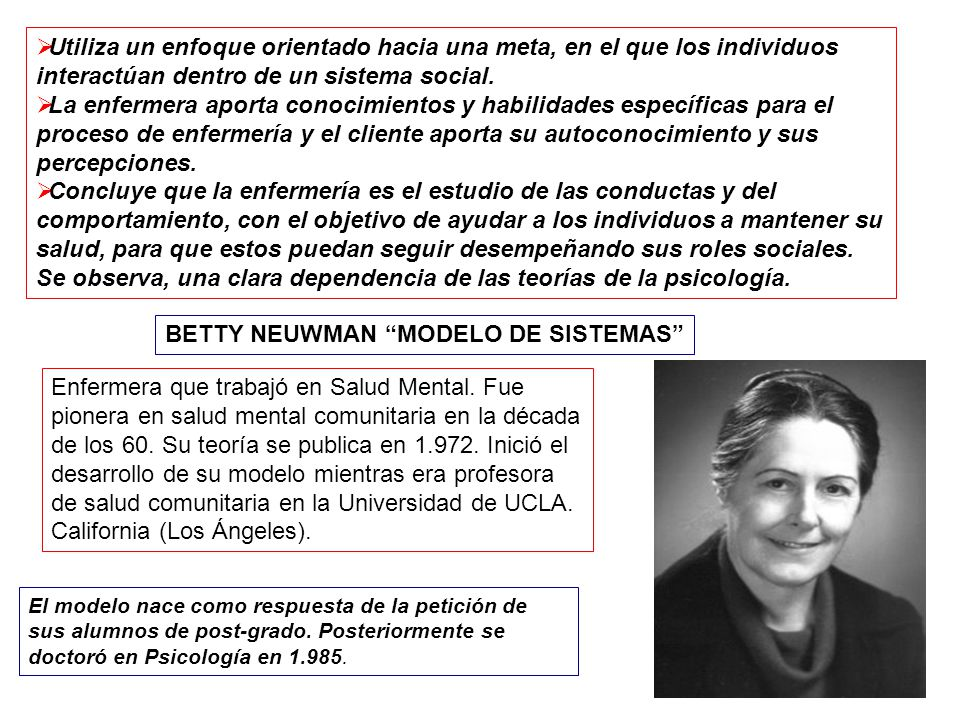 BETTY NEUWMAN MODELO DE SISTEMAS