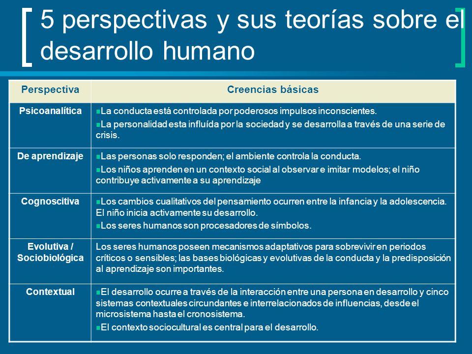 5 perspectivas y sus teorías sobre el desarrollo humano