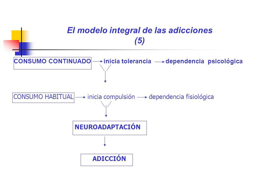 El modelo integral de las adicciones (5)
