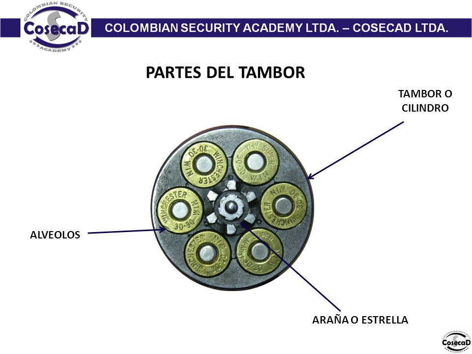 PARTES DEL TAMBOR TAMBOR O CILINDRO ALVEOLOS ARAÑA O ESTRELLA