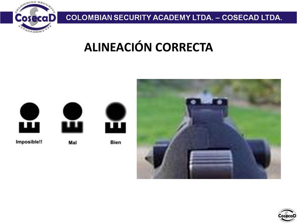 ALINEACIÓN CORRECTA