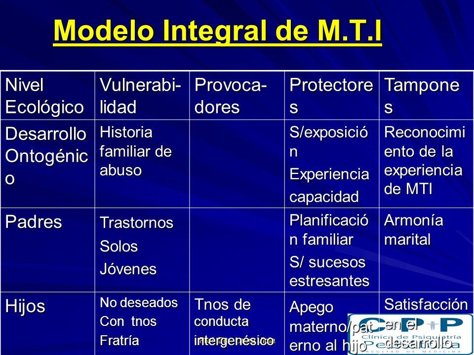 Modelo Integral de M.T.I Nivel Ecológico Vulnerabi-lidad Provoca-dores