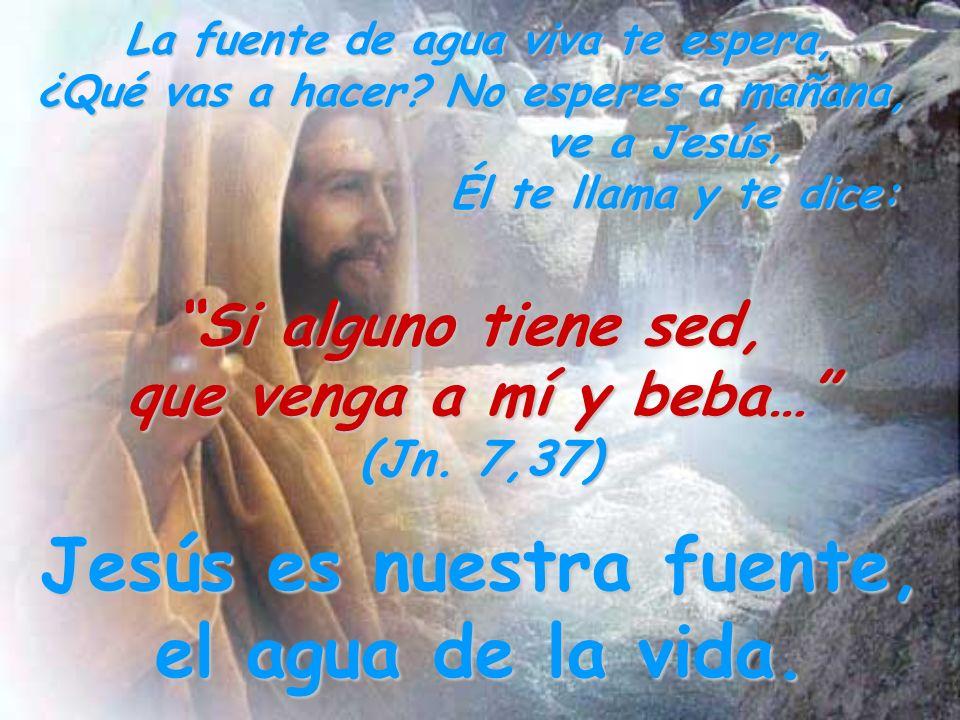 Jesús es nuestra fuente, el agua de la vida.