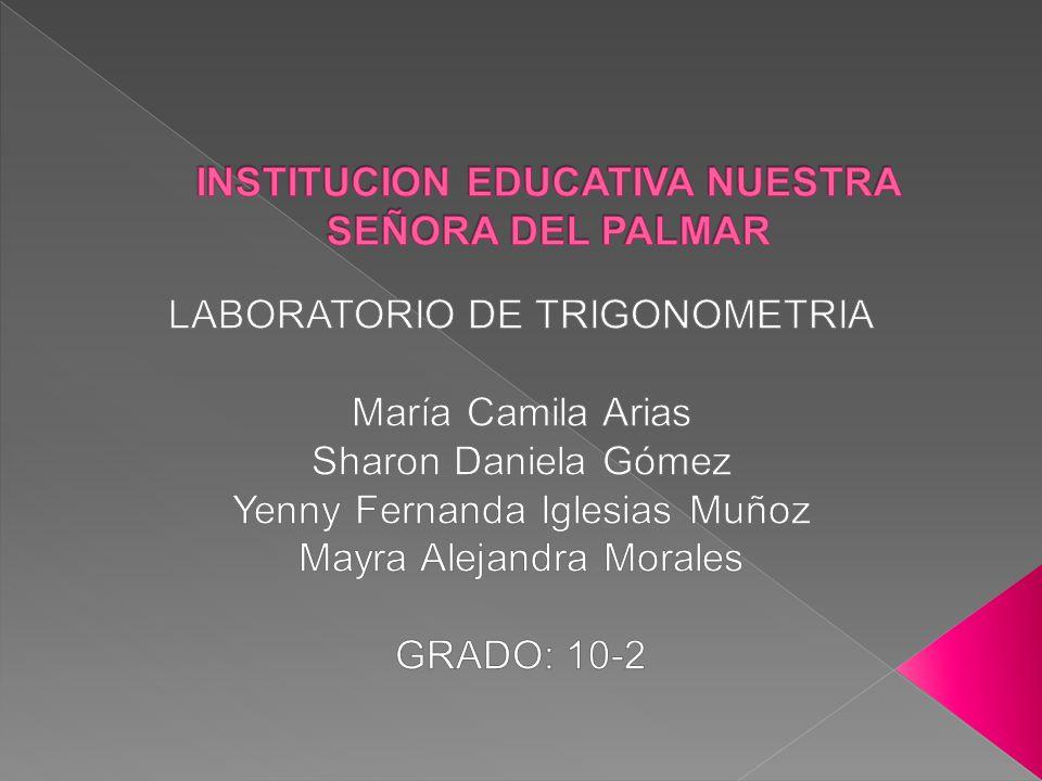 INSTITUCION EDUCATIVA NUESTRA SEÑORA DEL PALMAR