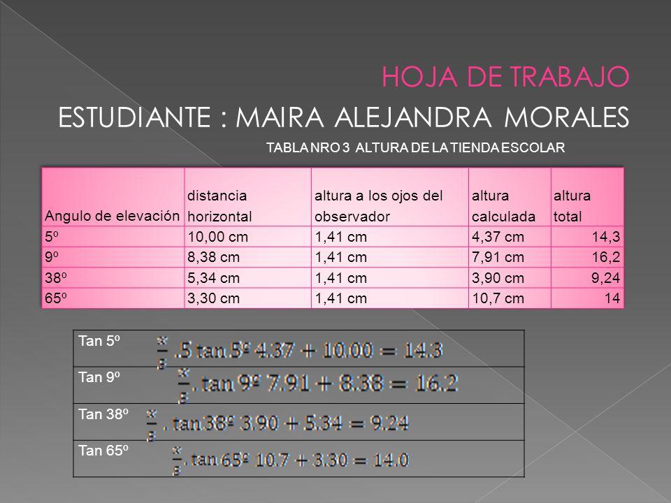 HOJA DE TRABAJO ESTUDIANTE : MAIRA ALEJANDRA MORALES