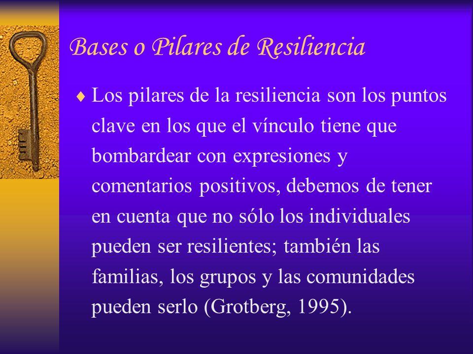 Bases o Pilares de Resiliencia