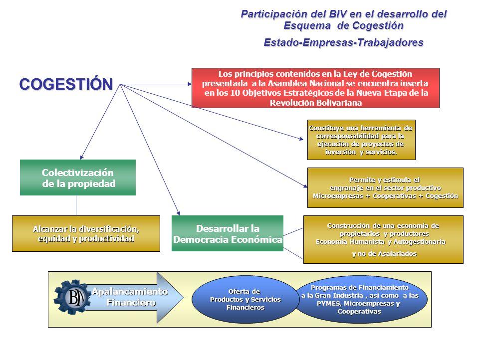 Participación del BIV en el desarrollo del Esquema de Cogestión