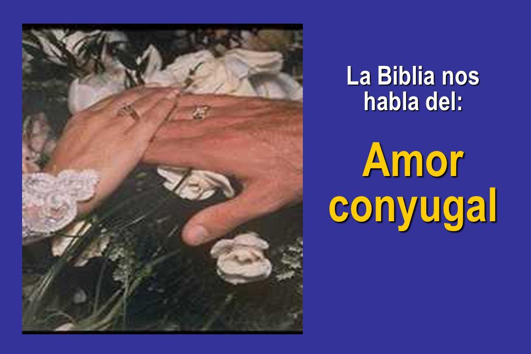 Biblia Habla Matrimonio : La común unión del matrimonio ppt descargar