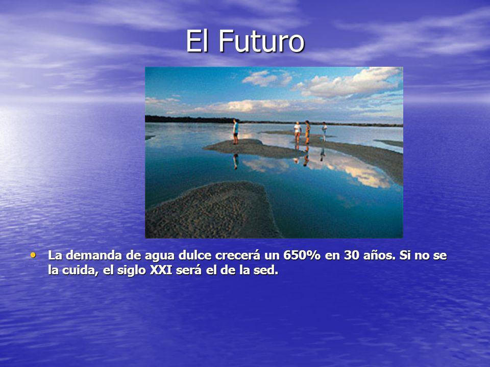 El Futuro La demanda de agua dulce crecerá un 650% en 30 años.